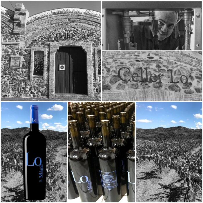 COLLAGE - CELLER LO